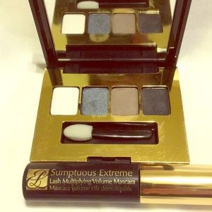 Estee Lauder eyeshadow and mascara